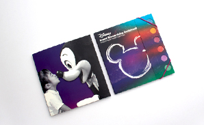 Disney-Brand guide book